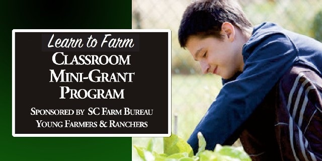 Learn to Farm Mini Grant